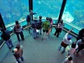 Pismo Sands Beach Club - Aquarium