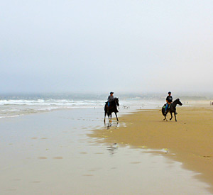 Beach Horseback Riding - Pismo Sands Beach Club Camping