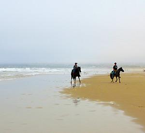 Horseback Riding Pismo Beach Ca